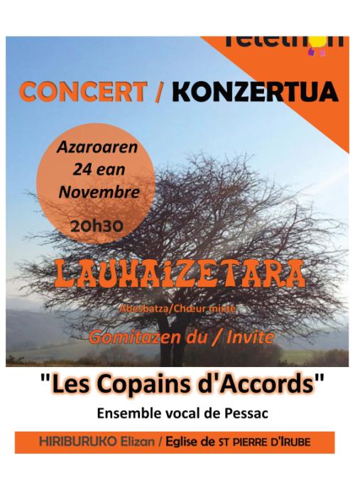 2018-11-24_Affiche_St-Pierre-Irube